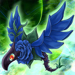Blue Rose Dragon