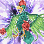 Bird of Roses