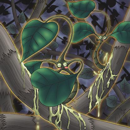 Cursed-ivy